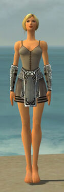Warrior Istani Armor F gray arms legs front.jpg