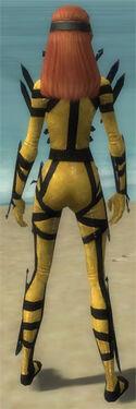 Assassin Obsidian Armor F dyed back.jpg