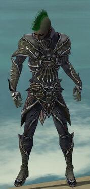 Necromancer Elite Necrotic Armor M gray front.jpg