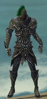 Necromancer Elite Necrotic Armor M gray front.jpg
