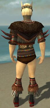 Ritualist Norn Armor M gray chest feet back.jpg