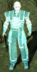 Royal Guard (Nightfall).jpg