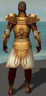 General Morgahn Primeval Armor Back.jpg