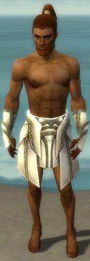 Paragon Asuran Armor M gray arms legs front.jpg