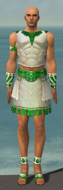 Paragon Istani Armor M dyed front.jpg