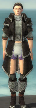 Elementalist Ancient Armor M gray chest feet front.jpg