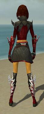 Assassin Deldrimor Armor F dyed back.jpg
