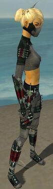 Assassin Seitung Armor F gray side.jpg