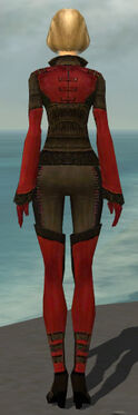 Mesmer Istani Armor F dyed back.jpg