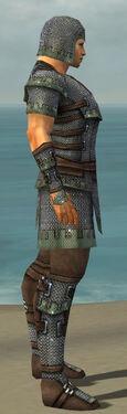 Warrior Tyrian Armor M gray side.jpg