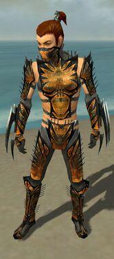 Assassin Elite Exotic Armor M gray front.jpg