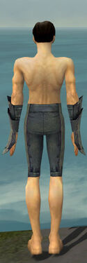 Elementalist Krytan Armor M gray arms legs back.jpg