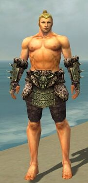 Warrior Elite Charr Hide Armor M gray arms legs front.jpg
