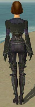 Mesmer Elite Rogue Armor F gray back.jpg