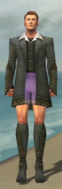 Mesmer Krytan Armor M gray chest feet front.jpg