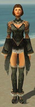 Mesmer Primeval Armor F gray chest feet front.jpg