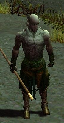 Warden of the Spirit.jpg