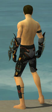Assassin Elite Kurzick Armor M gray arms legs back.jpg