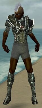 Necromancer Fanatic Armor M gray chest feet front.jpg