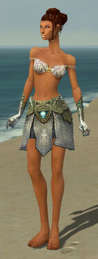 Paragon Monument Armor F gray arms legs front.jpg