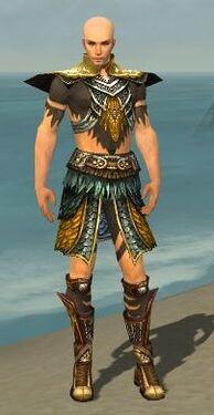Ritualist Deldrimor Armor M dyed front.jpg