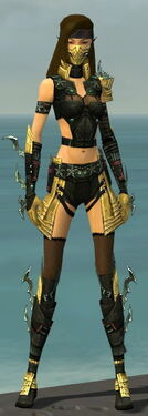 Assassin Elite Luxon Armor F dyed front.jpg