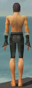 Elementalist Elite Canthan Armor M gray arms legs back.jpg