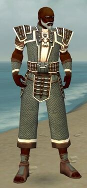 Monk Elite Judge Armor M gray front.jpg