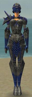 Warrior Elite Platemail Armor F dyed front.jpg
