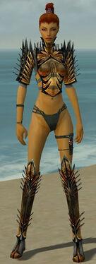 Assassin Elite Exotic Armor F gray chest feet front.jpg