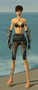 Assassin Elite Imperial Armor F gray arms legs front.jpg