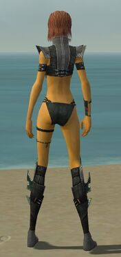 Assassin Luxon Armor F gray chest feet back.jpg