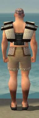 Monk Elite Sunspear Armor M gray chest feet back.jpg