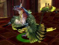 Phoenix (Pet).jpg