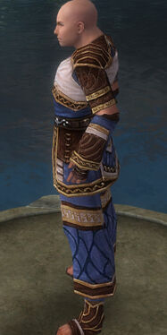 Monk Elite Canthan Armor M dyed side.jpg
