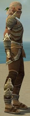 Ranger Asuran Armor M gray side.jpg