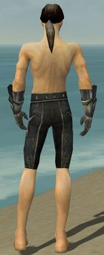 Elementalist Elite Flameforged Armor M gray arms legs back.jpg