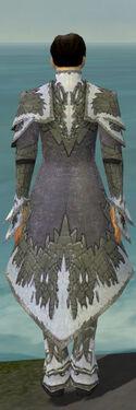 Elementalist Iceforged Armor M gray back.jpg