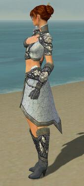 Elementalist Stoneforged Armor F gray side.jpg