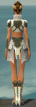Paragon Elonian Armor F gray back.jpg