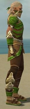 Ranger Asuran Armor M dyed side.jpg