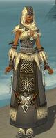 Dervish Norn Armor F gray front.jpg