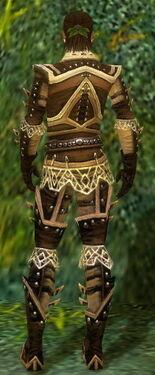 Ranger Elite Kurzick Armor M gray back.jpg