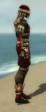 Ritualist Elite Luxon Armor M dyed side.jpg