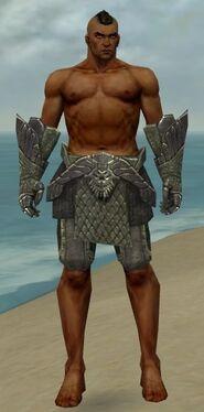 Warrior Elite Platemail Armor M gray arms legs front.jpg