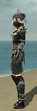 Necromancer Asuran Armor F gray side.jpg