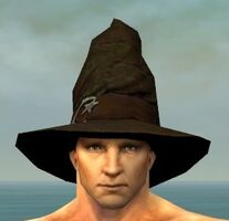 Wicked Hat M gray front.jpg