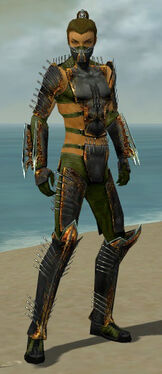 Assassin Exotic Armor M dyed front.jpg