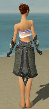 Elementalist Elite Stoneforged Armor F gray arms legs back.jpg