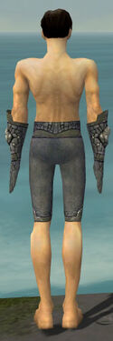 Elementalist Stoneforged Armor M gray arms legs back.jpg